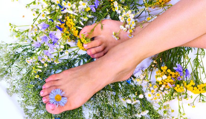Красивые ноги на фоне полевых цветов