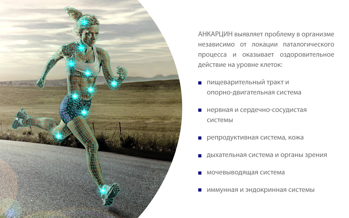 Анкарцин - оздоровление организма на клеторчном уровне
