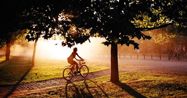 Дівчина в осінньому парку на велосипеді