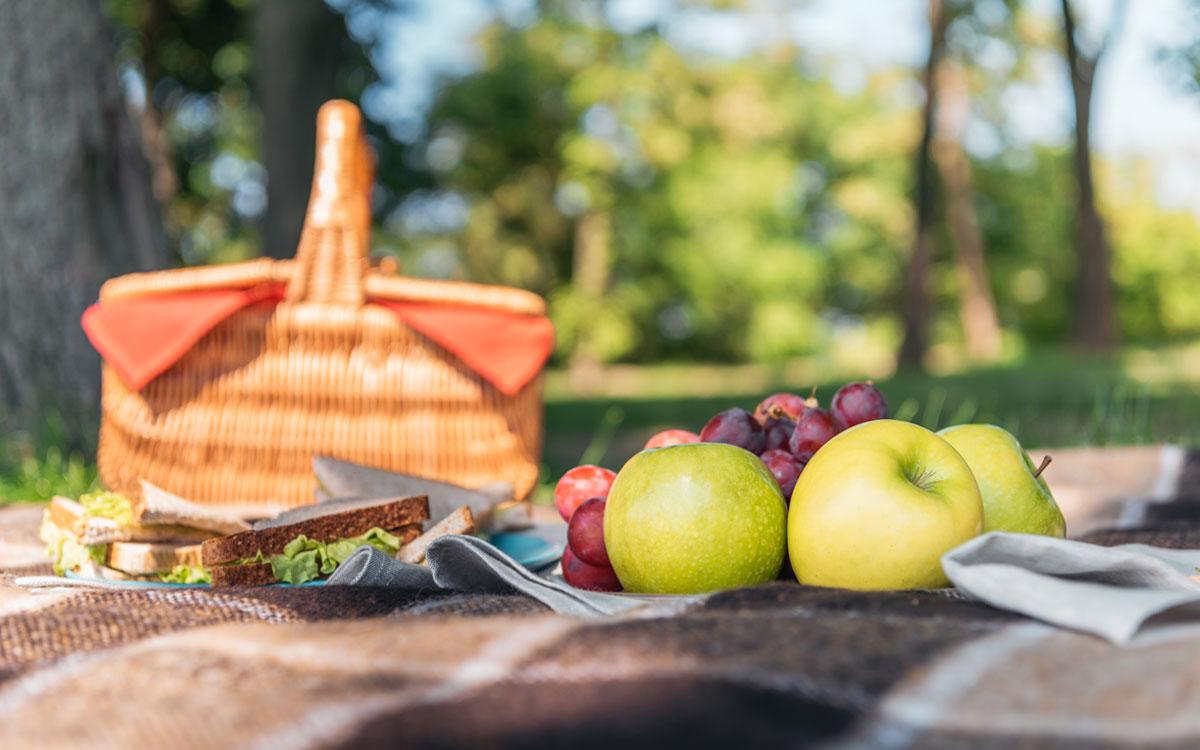 Пикник на покрывале с бутербродами и фруктами