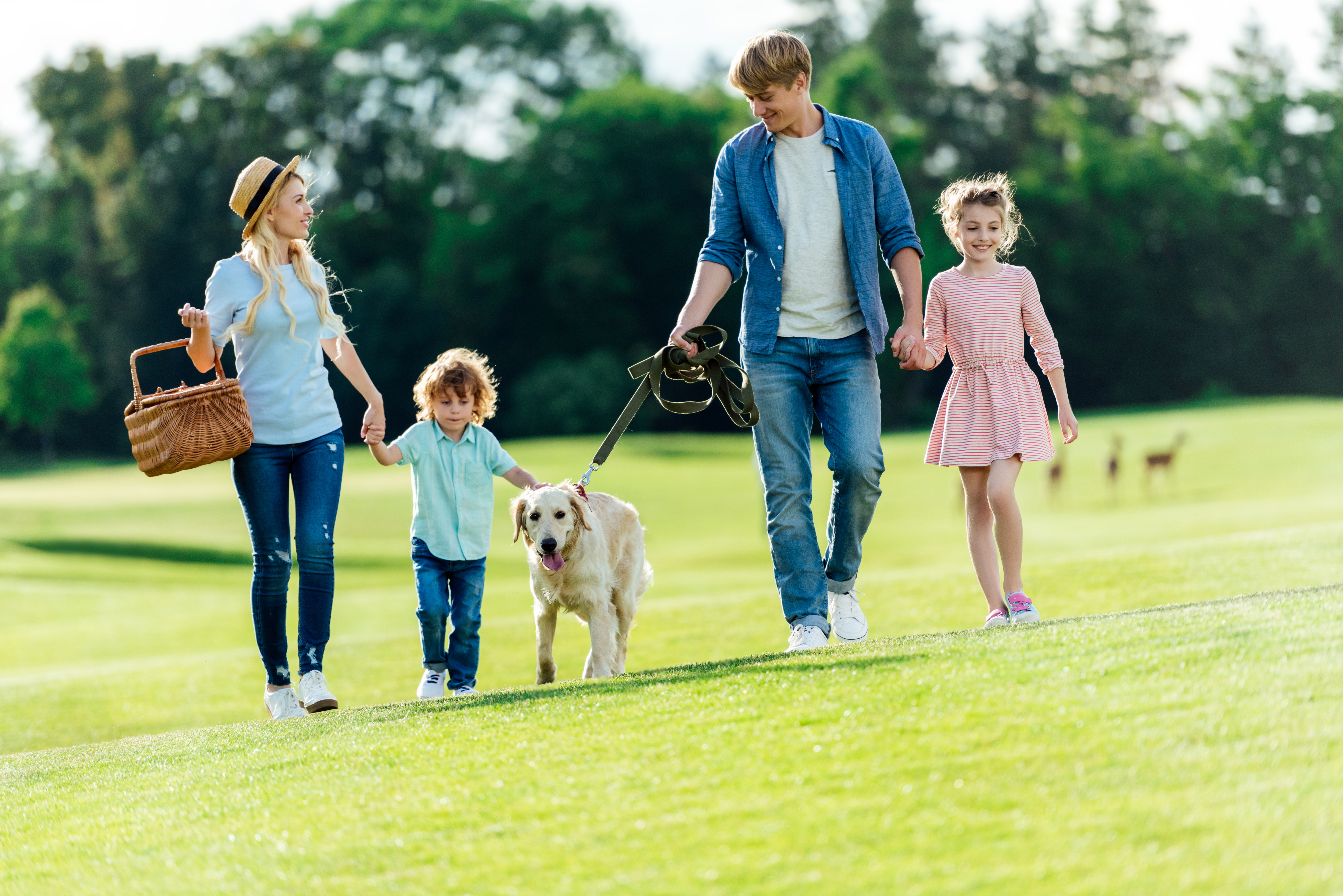 Семья на прогулке с детьми и собакой